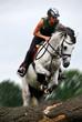 Fototapeten,reiter,reiterin,pferd,sprung