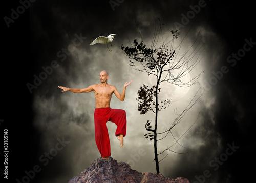 Fototapeta Martial Arts Kung Fu Background