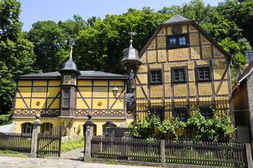 Rote Amsel, Leonhardi-Museum, Dresden, Loschwitz, Deutschland
