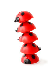 inclined tower made of five red small ladybugs isolated