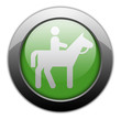 "Green Metallic Orb Button ""Horse Trail"""