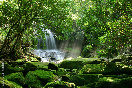 A large waterfall is hidden by lush foliage and mossy rocks
