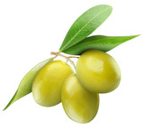 Fototapety Isolated olives. Three green olive fruits on branch with leaves isolated on white background