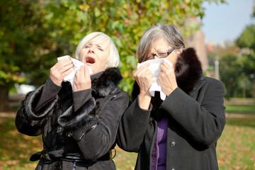 allergie im herbst