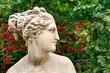 Kopf einer Venusstatue im Profil