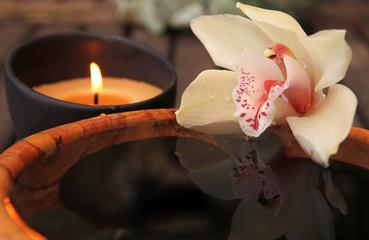 La flamme et l orchidée