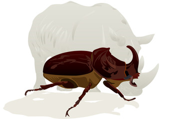 Rhino and Rhino beetle