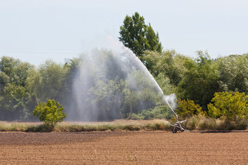 Small irrigation equipment working on a plantation in Portugal
