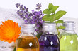 Massage, wellness with medical plants