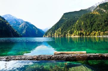 Forest and Mountain reflecting in a lake,Jiuzhaigou,China