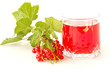 compote of red currants
