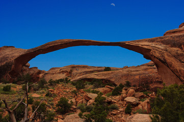 Moon shines over the incredible Landscape Arch