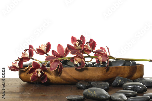 orchids in wooden bowl with stone