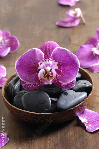 orchid on pebble in wooden bowl