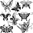 fashion butterfly illustration