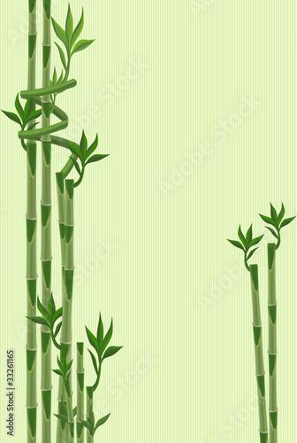 Fototapeten,bambu,grün,streife,hintergrund