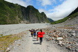 Tramping at the valley of Fox Glacier poster