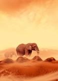 Fototapeta Afryki - zwierzę - Dziki Ssak
