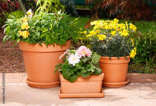 Vasi in terracotta con fiori di tesgro tessieri foto for Vasi in terracotta prezzi
