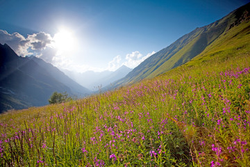 Scenic view of caucasus mountains