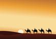 Paysage_Desert_Dromadaire