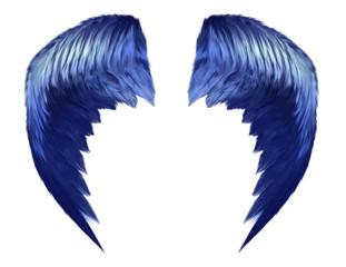 Blue Heavenly Wings
