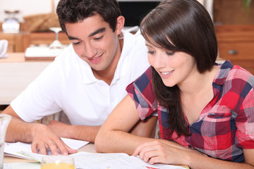 Young couple looking at documents together