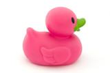 Single pink rubber duck on white