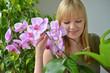 Junge Frau gießt Orchideen
