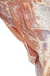 Closeup of defrosted raw lamb meat with copy space