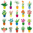 Set of colorful pots of flowers