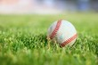Used baseball on a green grass field