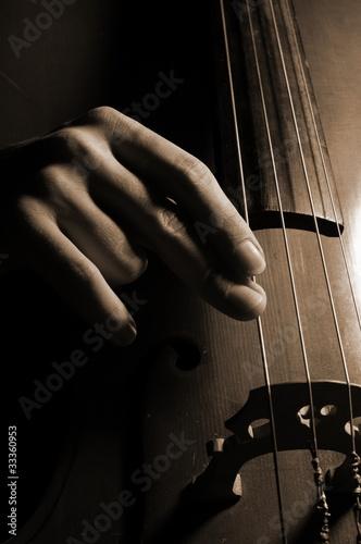 Musician playing contrabass