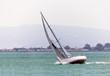 Sailing boat in the San Francisco bay
