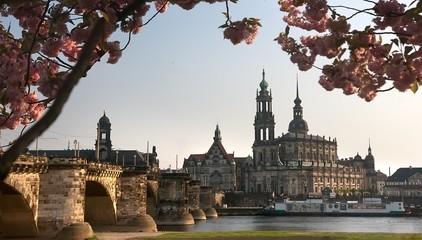 Dresden in Blossom