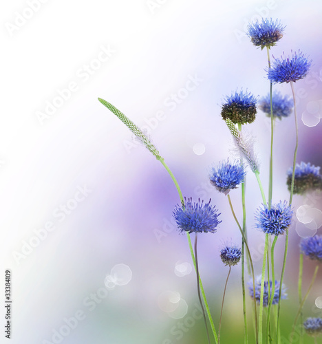 Abstract Flowers Border Design