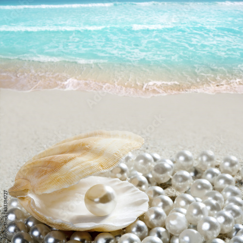 Fotobehang Caraïben Caribbean pearl on shell white sand beach tropical