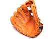 Baseball Glove - 33388180
