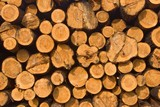 woodpile as a background poster