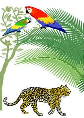 Papagai und Jaguar