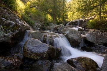 torrente al parco del Mont Avic
