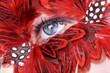 Blaues Auge mit Federn, quer close up
