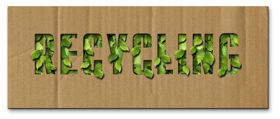 Recycling-Pappe