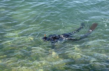plongeur dans l'océan