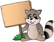 Cartoon racoon holding wooden board