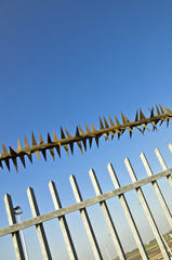 Barbed wire fence at the blue sky. metaphor of freedom
