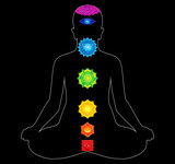colorful all chakras of body poster
