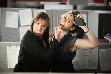 Office Workers Fighting