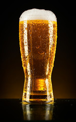 Glass of beer on dark background