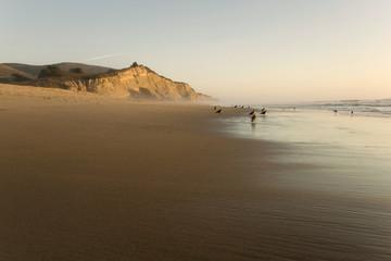 San Gregorio Beach and cliffs, California State Beach